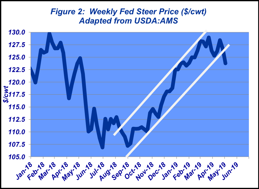 Weekly Fed Steer Prices - May 2019
