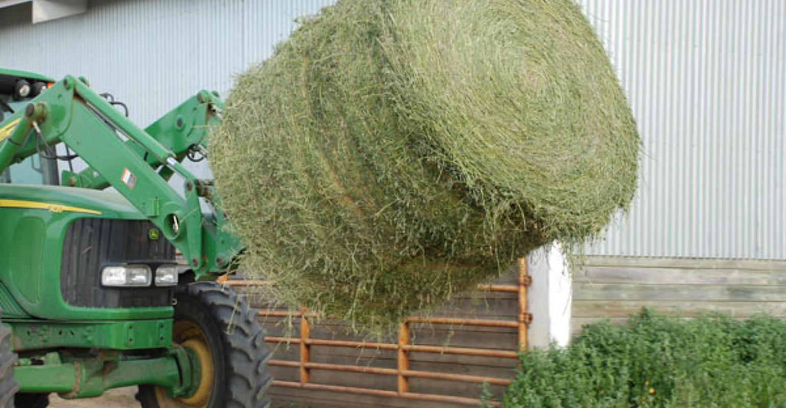 5 Considerations For Proper Hay Storage During Winter | Beef
