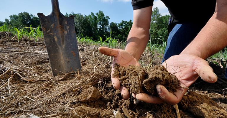 Web Soil Survey: A tool for your working land