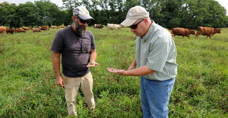 : Local NRCS district agronomist Drew DeLang (right) and farmer Bill Totemeier inspect the clover in a pasture mix of forage species.