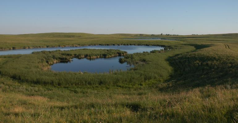 Pasture with pond