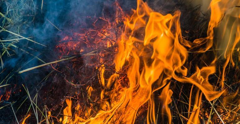Beware of hot hay temperature danger zone