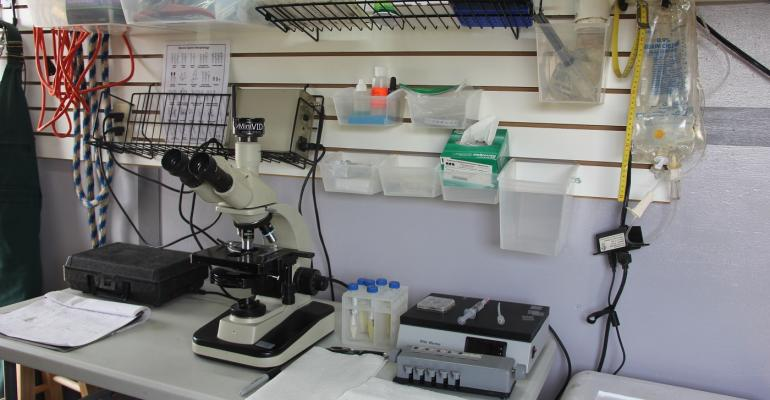 Phase-contrast microscope in lab