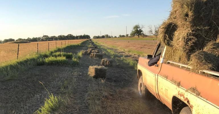 Baling Ditches