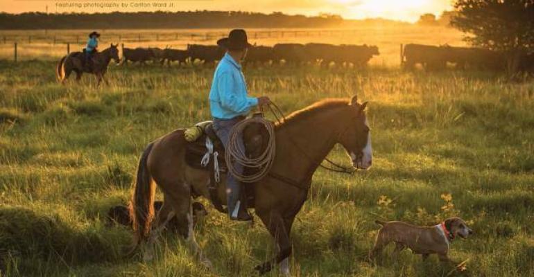 Florida ranching