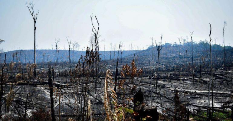 4-30 wildfire.jpg