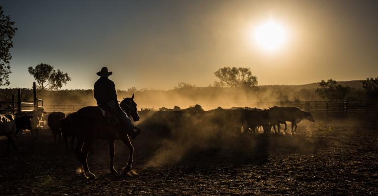 Relief efforts underway for Australian ranchers