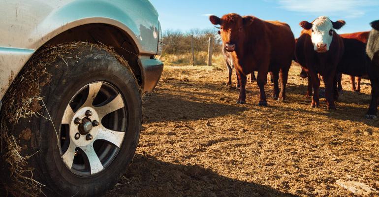 Pickup truck on a farm