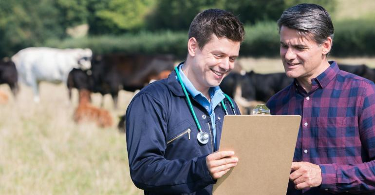 Beef producer and veterinarian