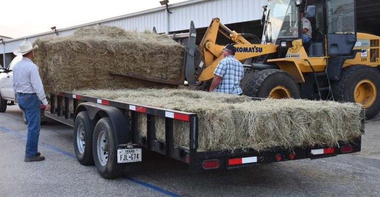 Hay for hurricanes