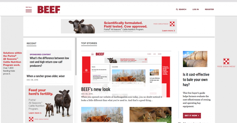 A new look for our website online