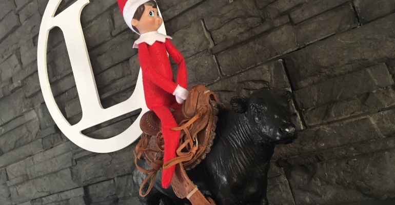 View our Elf on the Shelf gallery