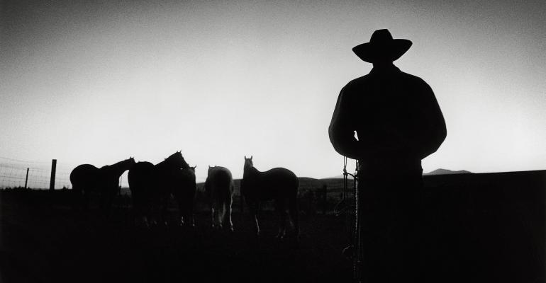 Cowboy Documentaries.jpg