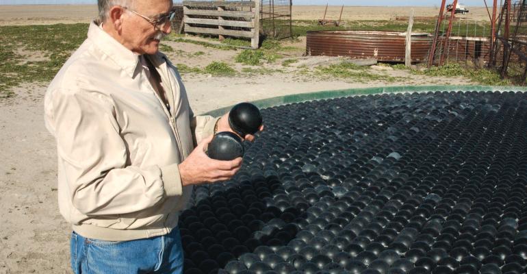 Shadeballs in cattle water tank