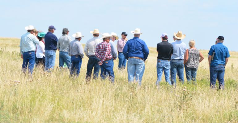 Texas pasture tour of the wildfire grounds