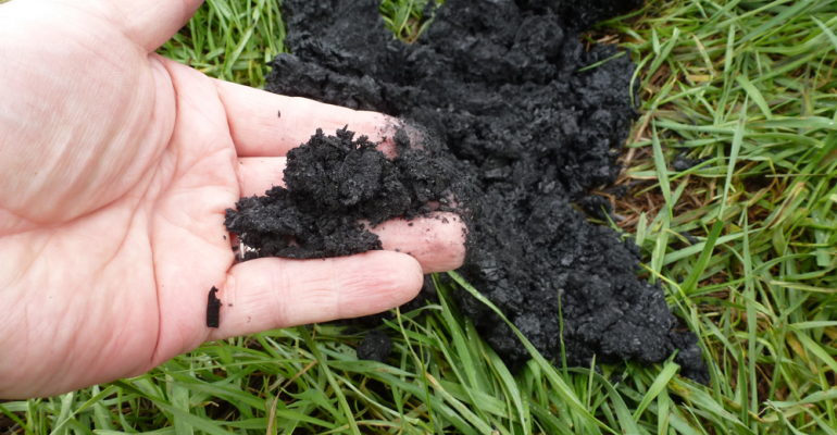 Biochar as manure storage