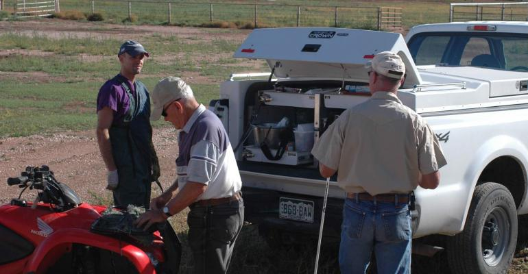 Beef producers working with veterinarian