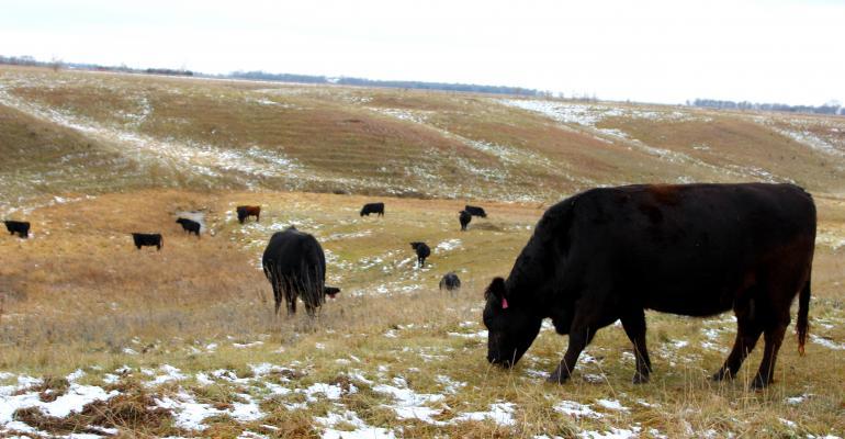 Winter In South Dakota