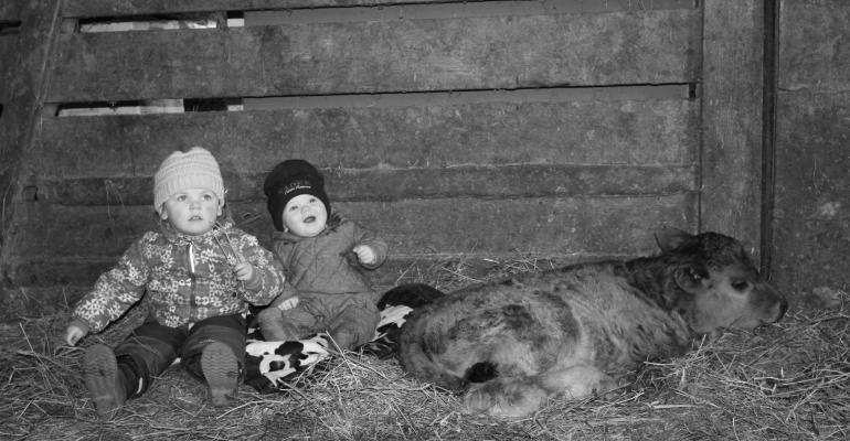 Kids and calving