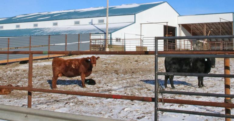 The Lazy TV ranch built a 60-by-120-foot calving barn
