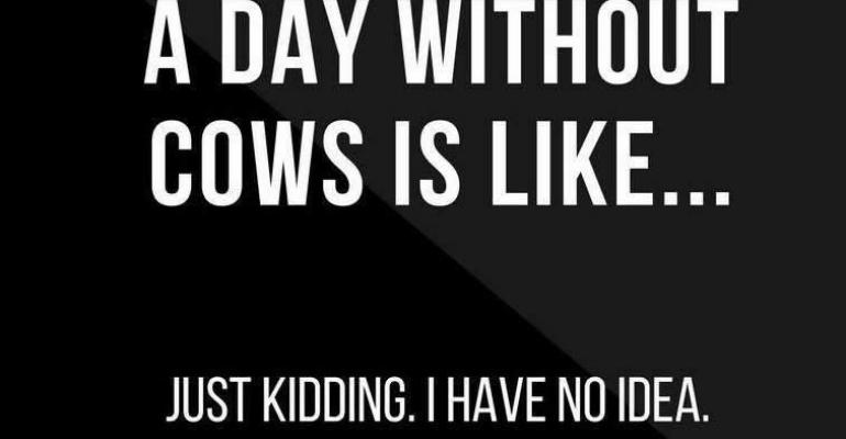 a day without cows