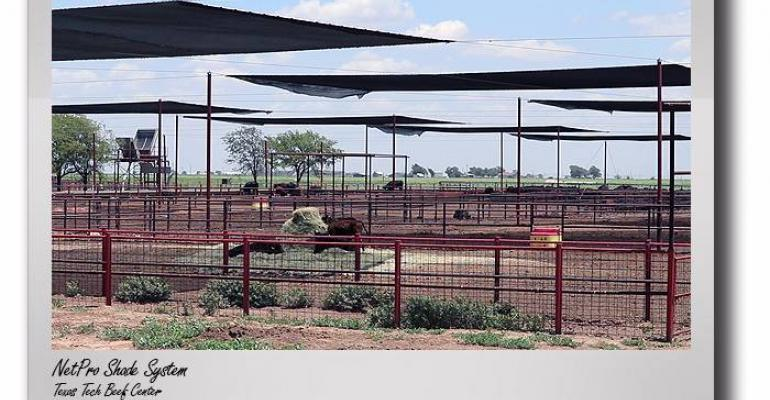 shade covers suspended over feedlot