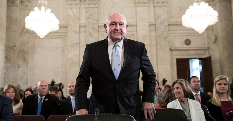 Sonny Perdue Senate Agriculture Committee nomination hearing