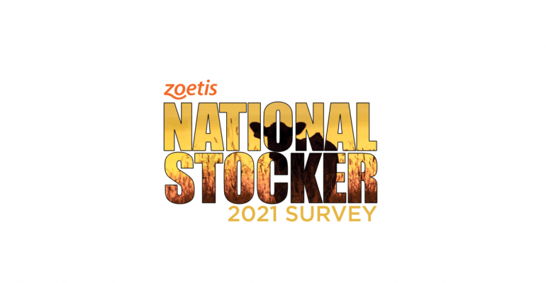 National Stocker Survey pic.png