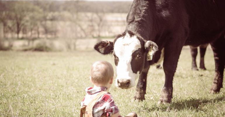 The cow whisperer
