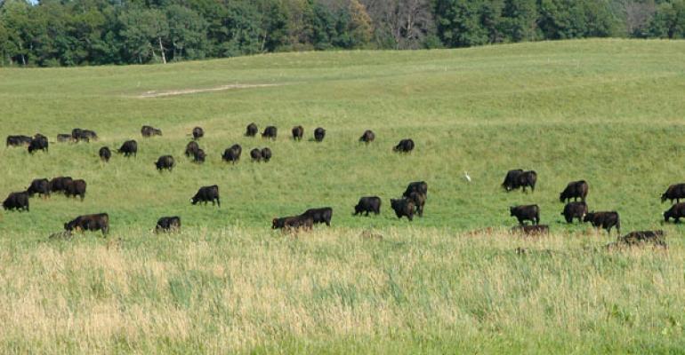 Pasture Range