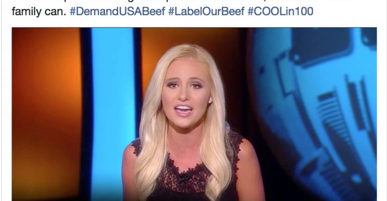 Tomi Lahren on COOL