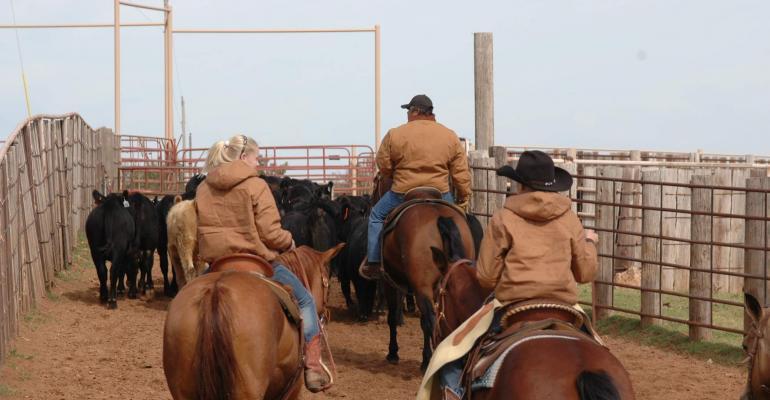 Ranching generations