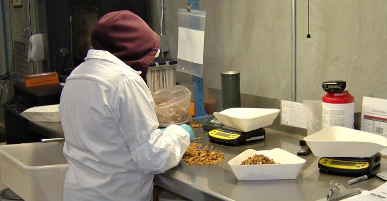 Almond processing plant worker