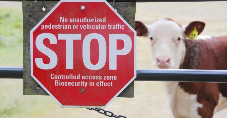 cattle farm biosecurity_Modfos_iStock_Thinkstock-531973270.jpg
