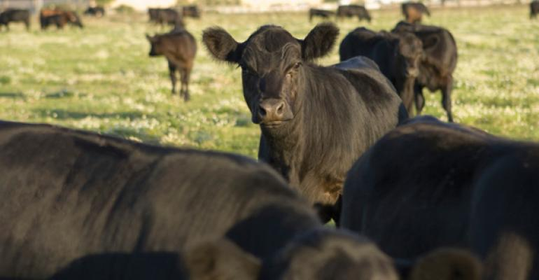 Veterinary Feed Directive (VFD) rules finalized