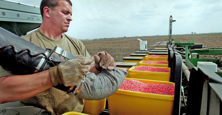 corn planting young farmer Getty