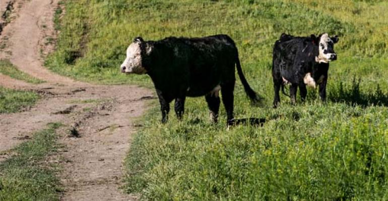 State of the Industry | June 2020 | BEEF