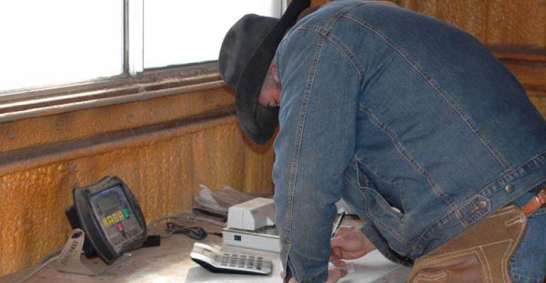 cowboy-weighing-cattle-BRTejasFeeders048.jpg