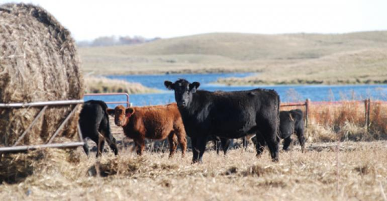 Here's why you should rotate your hay feeding areas