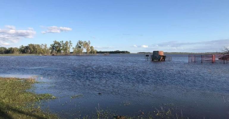 flooded pasture.jpg