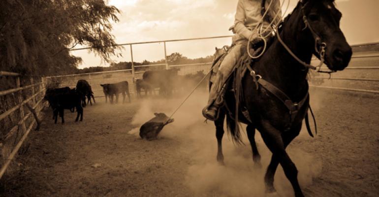 ranch cowgirl photos
