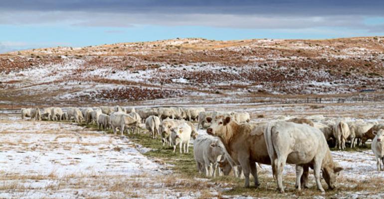 winter ranch photos