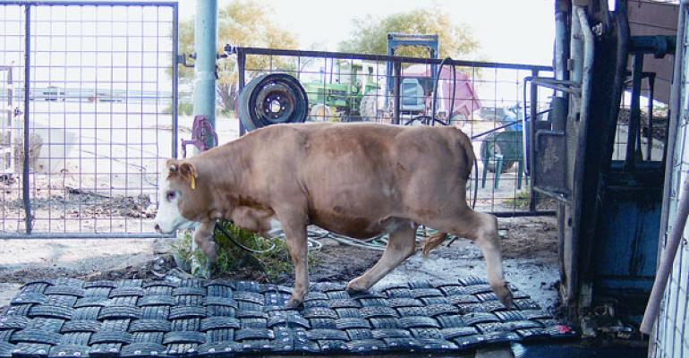 cattle no slip mats
