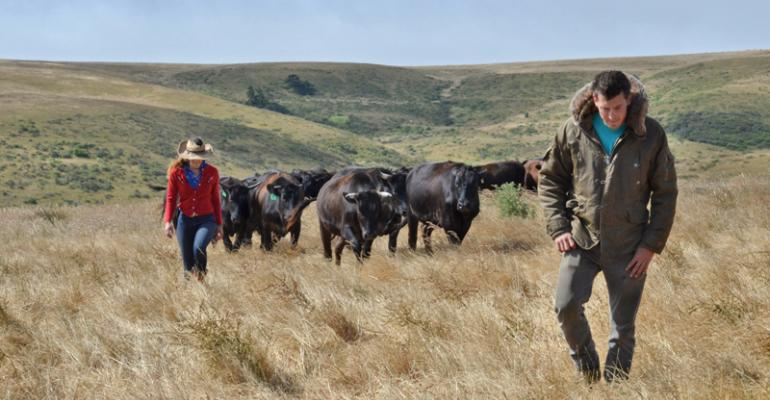 7 U.S. cattle operations honored for stewardship efforts