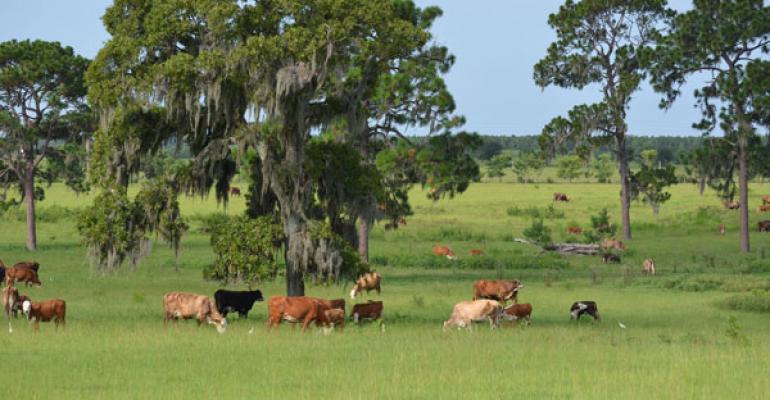 Ranching Operations Personify Environmental Stewardship