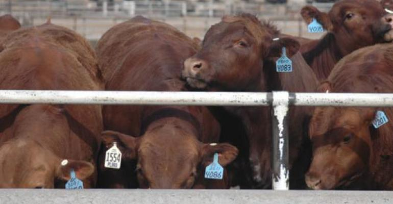 5 Trending Headlines: Fed Cattle Exchange returns: Plus; Prep your pastures for fall