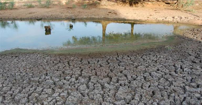Reader Perspective: 2011 Drought Ravages Cattle Country