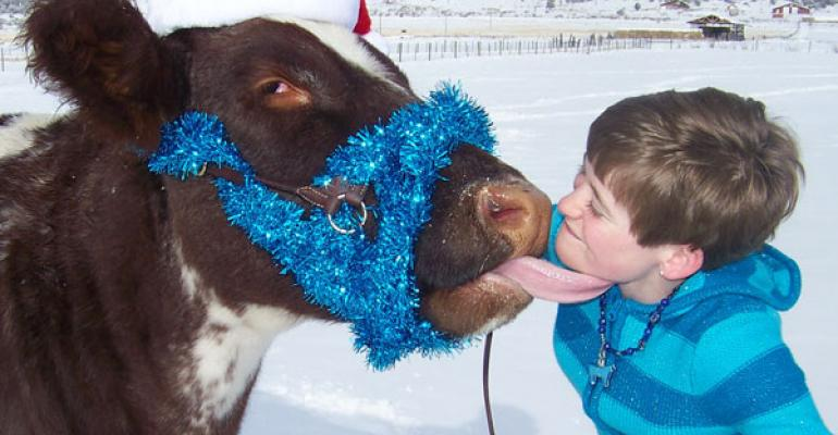 10 Best Christmas On The Ranch Photos