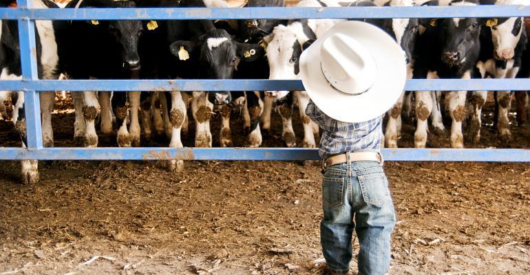 "Top 15 ""Santa's Little Ranch Helpers"" Photos"
