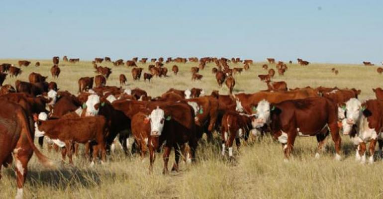 6 Trending Headlines: 3 years, 3 million cows; PLUS Idaho's ag-gag law gets gagged